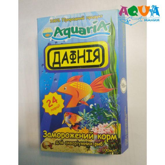 чем лучше кормить аквариумных рыб харацинтовых живородку барбусов