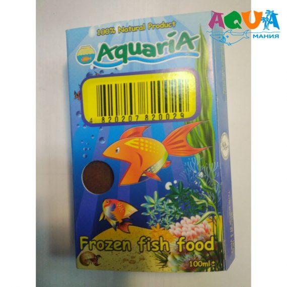 чем правильно хранить мелкую аквариумную рыбу