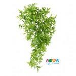 rastenie-dlya-terrariuma-plastik-kroton-76230-triksi