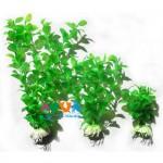 plastikovoe-rastenie-dlya-akvariuma-hidom-29