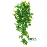 rastenie-dlya-terrariuma-plastik-phyllo-76233-triksi