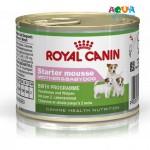 royal-canin-starter-mousse-muss-dlya-shhenkov-do-2-mes-royal-kanin-starter-muss