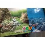 fon-dlya-akvariuma-vysota-50sm-10sm-9078-9079