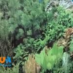 fon-dlya-akvariuma-vysota-40sm-odnostoronnij-10sm-f401