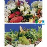 fon-dlya-akvariuma-vysota-48sm-10sm-f-1-m2-48