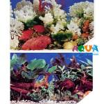 fon-dlya-akvariuma-vysota-48sm-10sm-f-3-m2-48