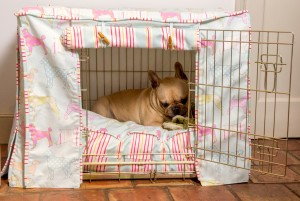 Dog-Crate-Cover-in-Ashley-Wilde-Hollyfield-Sorbet-and-Lucy-Stripe-1