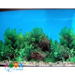 fon-dlya-akvariuma-vysota-50sm-odnostoronnij-10sm-f506