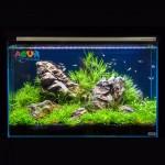 akvariumnyj-nabor-aqua-set-66l-7144-collar
