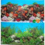 fon-dlya-akvariuma-vysota-30sm-10sm-9001