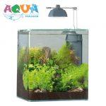 nano-akvarium-eheim-aquastyle-24-komplekt