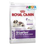 royal-canin-giant-starter-pervyj-tverdyj-korm-dlya-shhenkov-gigantskih-porod