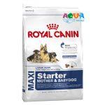 royal-canin-maxi-starter-pervyj-tverdyj-korm-dlya-shhenkov-krupnyh-porod