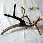 koryaga-naturalnaya-dlya-akvariuma-2