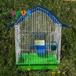 kletka-dlya-ptits-kolibri-1-fauna