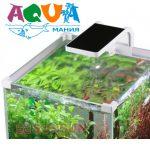 как нужно выбирать освещение для аквариума