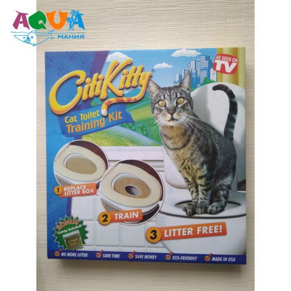 как приучить кота кошку к унитазу