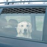 Автоаксессуары для собак