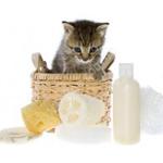 Груминг для кошек