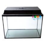 akvarium-pryamoi-25-l-s-kryshkoi-aquamaniya