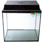 akvarium-pryamoi-40-l-s-kryshkoi-aquamaniya
